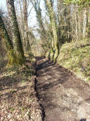 chemin_rural